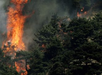 Wildfires blaze through north Lebanon homes, farms, pine forests
